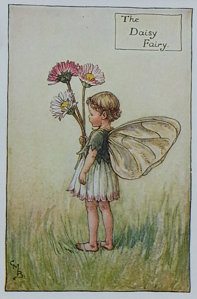 The Daisy Flower Fairy
